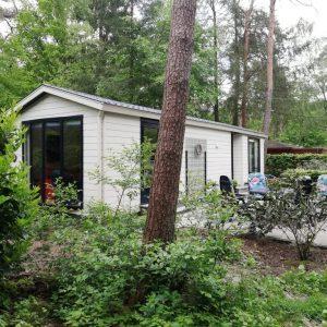 3-persoons chalet op Bospark Dennenrhode in Doornspijk