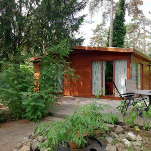 4-persoons chalet op Bospark Dennenrhode met omheinde tuin