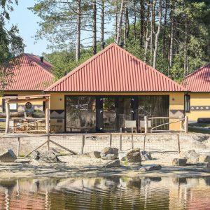 Lodge in vakantiepark Beekse Bergen